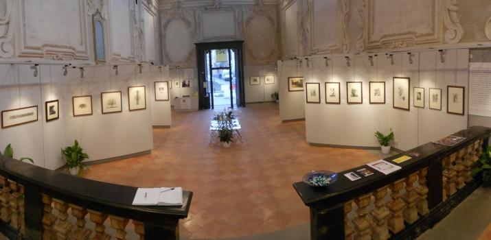 Panoramica dal fondo dello spazio espositivo. Si riconoscono sulla sinistra le soavi acquaforti di Javier De Maistre e sulla destra i magnifici bulini di Jürgen Czaschka
